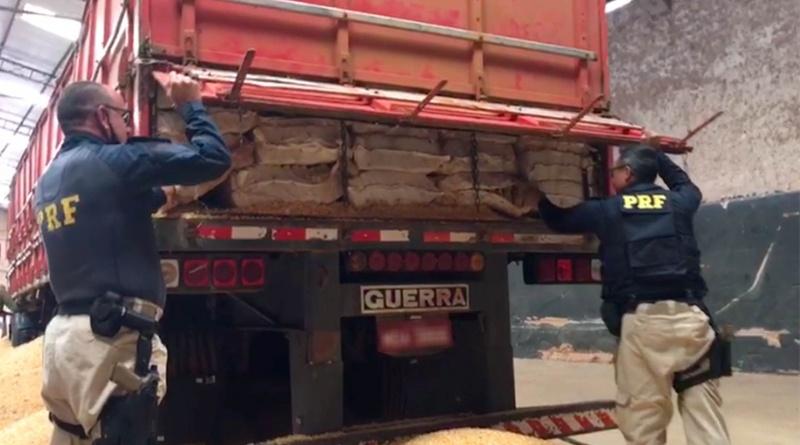 Ponta Porã:  PRF apreende 8 toneladas de maconha