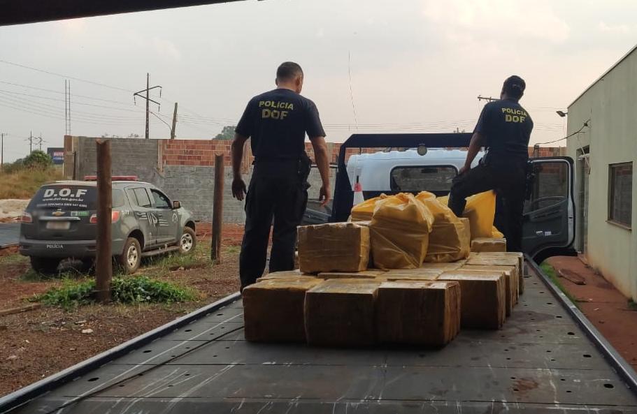 Vídeo: Mais de meia tonelada de maconha é apreendida em sitióca