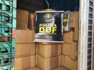 Ponta Porã: Caminhão com quase três toneladas de maconha foi apreendido pelo DOF