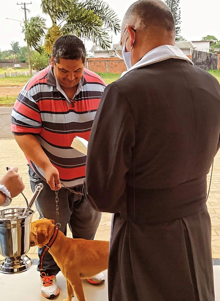 Dia de São Francisco de Assis é marcado pela bênção dos animais em Ponta Porã